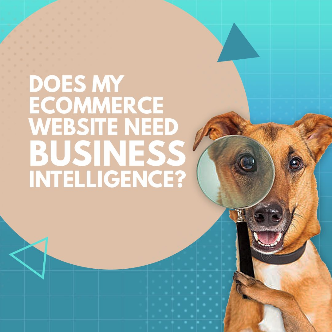 Does My Ecommerce Website Need Business Intelligence?