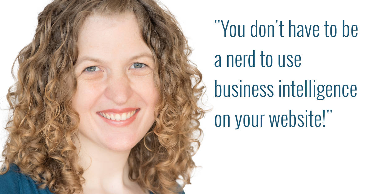 you don't have to be a nerd to use business intelligence